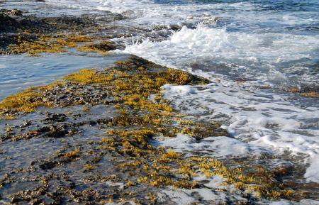 Rocky coast with sea waves hitting the rocks Stock Photo - 3395399