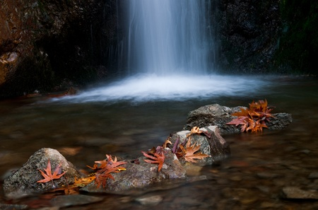 Waterfall with rocks and leaves. Waterfall is called Millomeri and is located at Troodos mountains,Cyprus
