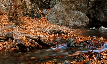 Stream in the forest at millomery waterfall in Cyprus  photo