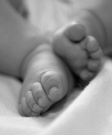 Newborn baby feet in black and white  photo