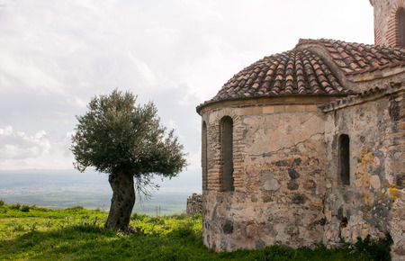 cyprus tree: Abandoned old orthodox  christian  monastery church and olive tree at the mountain range of Pentadaltylos near Kerynia town in Cyprus Stock Photo