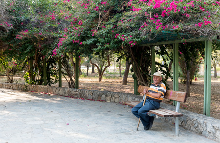 80s adult: Nicosia, Cyprus - July 7 2016: Senior adult holding his stick, sitting and relaxing on a bench at the beautiful central gardens of Nicosia, Cyprus