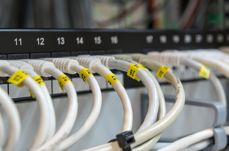 network port: Computer Ethernet data Cables connected in a row on a data patch panel port to provide connectivity to a Network.