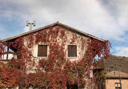 Traditional house exterior with wooden windows covered with autumn  red foliage at the mountain village of Kalopanayiotis in Cyprus Stock Photo