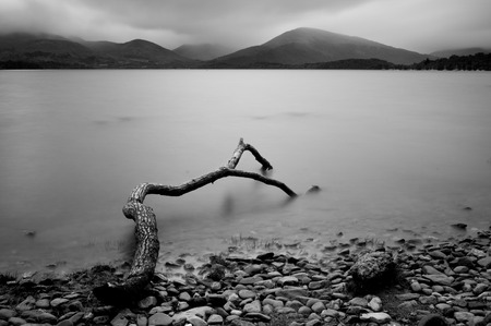Tree log on the Loch Lomond lake in  Trossachs National Park, Scotland. Long exposure photography Stock Photo