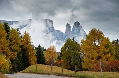 Landscape with beautiful autumn meadow field and trees  and the amazing dolomite rocky peaks  the valley of  Alpe di siusi Seiser Alm South Tyrol in Italy