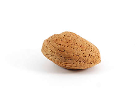 pekan: Almond , close up,  isolated on white background Stock Photo