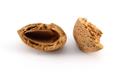 pekan: Cracked almond shell on white background