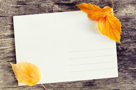 Close up photograph of a postcard with fallen leaves