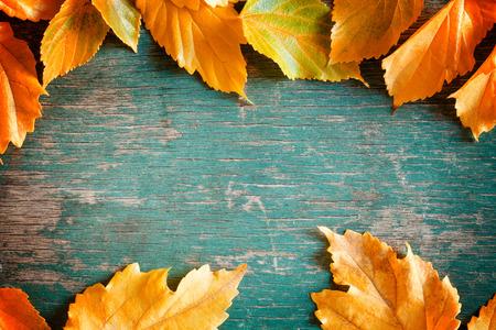 カラフルな秋背景の写真を閉じる