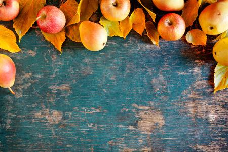 떨어진 사과와 배의 무리의 사진