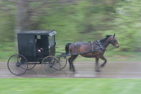 Panning shot of Amish buggy going by, with motion blur