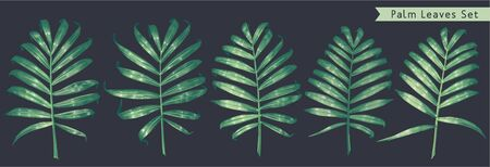 Hand drawn tropical leaves set. Vector elements for your design, easy to use, edit and customize. Palm leaves for prints, patterns, clothes and textiles, poster, banner, wrapping paper and packaging.