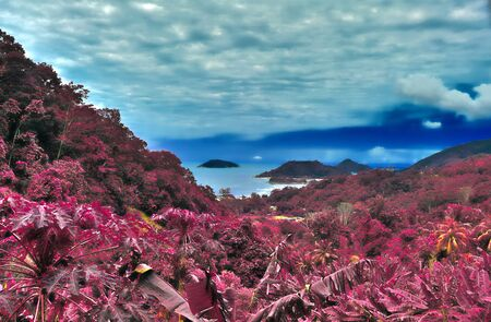Beautiful purple and pink infrared panorama of a landscape on the Seychelles Islands