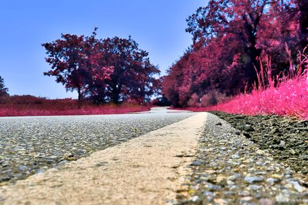 Beautiful pink and purple infrared shots of country landscapes in europe