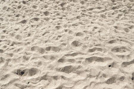 Vue rapprochée détaillée sur le sable sur une plage de la mer baltique