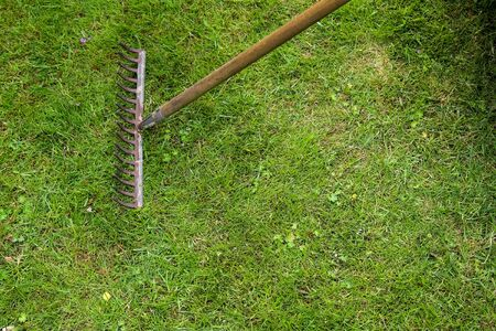 Gardening equipment on grass with empty space.