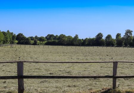 Beautiful wooden horse fence at an agricultural field on a sunny day 写真素材