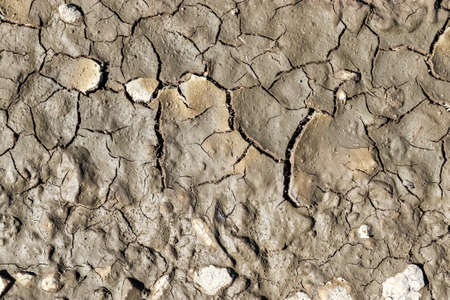Detailed close up view on dry agricultural grounds and acre in high resolution showing dry farming fields and cracks Standard-Bild