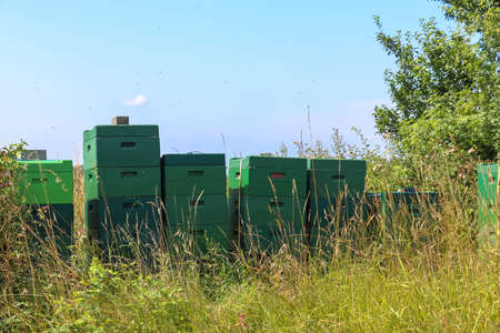 Lots of bee boxes at a field in northern europe