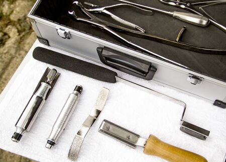 Equine dentist tools ready to use, clean and tidy. in a table with a new box of tools of a veterinarian Reklamní fotografie