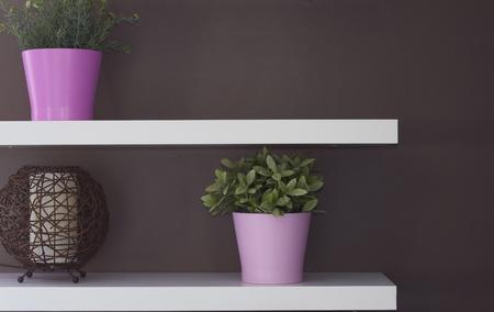 shelf wall: Flower decoration wall boutigue Stock Photo