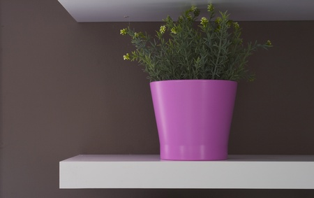 Flowerpot at decoration wall 2 Stock Photo