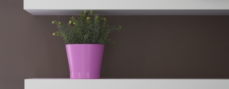 Flowerpot at decoration wall Stock Photo