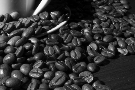 Black and white coffee beans closeup
