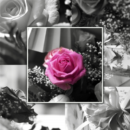 Floral collage for greeting card or background  Good for weddings or thanksgiving Stock Photo - 13718504