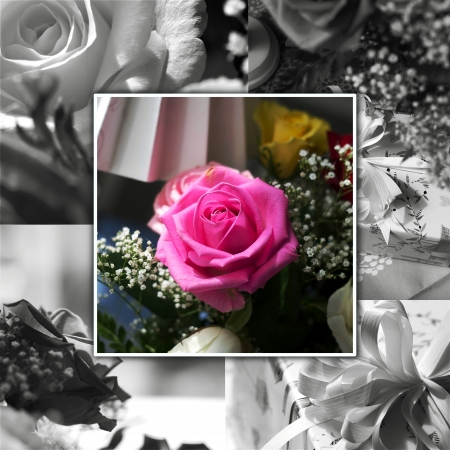 Floral collage for greeting card or background  Good for weddings or thanksgiving  photo