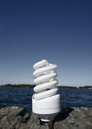 economize: Idea for ecological activity with energy saving bulb  Save the world