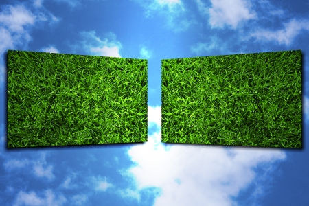 Two display showing grass for ecology use Stock Photo - 13885524