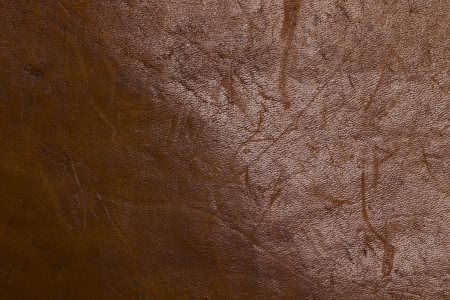 Old brown leather book closeup photo texture Stock Photo - 14250050