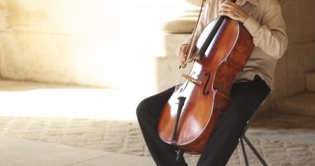 Man playing violin at streets of Paris Stock Photo - 14660932