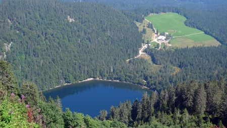 cloudless: Southern Black Forest Lake