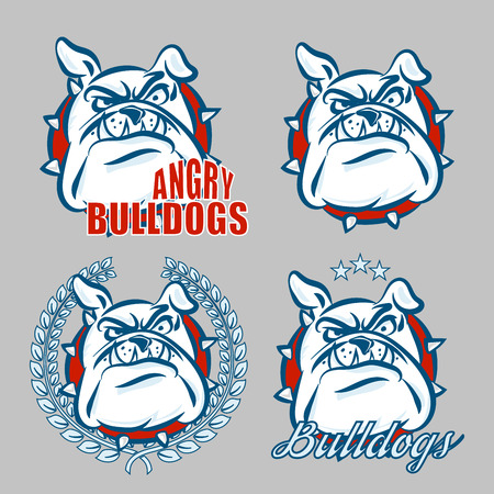 Detailed logo set of bulldog head with angry face emotion for college, school sport team logo concept, apparel design. Vector Illustration.