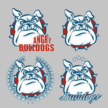 Logo conjunto detallado de cabeza bulldog con emoción enojado cara para la universidad, la escuela deporte equipo logotipo concepto, diseño de ropa. Ilustración del vector.