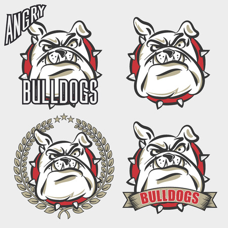 Gedetailleerde logo set bulldog hoofd met boos gezicht emotie voor universiteit, school sport team logo concept, kleding design. Vector Illustratie.