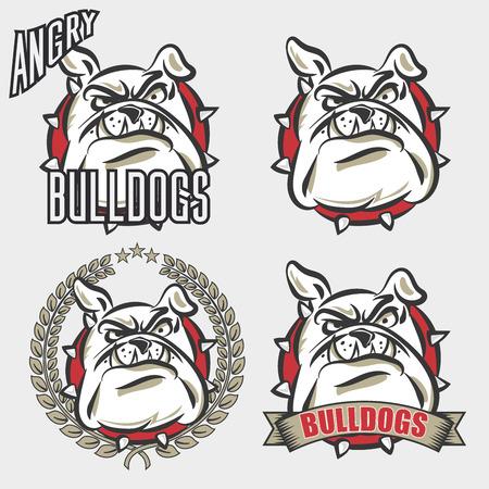 team sports: Logo conjunto detallado de cabeza bulldog con emoción enojado cara para la universidad, la escuela deporte equipo logotipo concepto, diseño de ropa. Ilustración del vector.