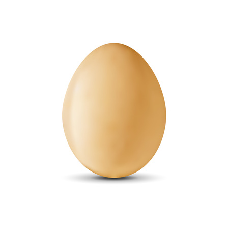 raw egg: Realistic egg on a white background