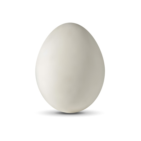 Realistic egg on a white background