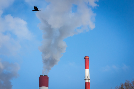 The power station with two smoke stacks and black bird flying air pollution