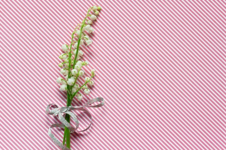 Lilly of valley on pink striped pattern background Stock Photo