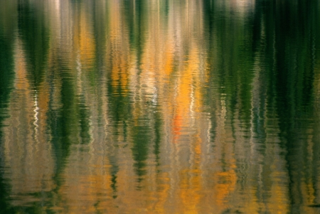 bear lake: Abstract reflections of yellow aspen trees and evergreens in Bear Lake, Rocky Mountian National Park  Stock Photo