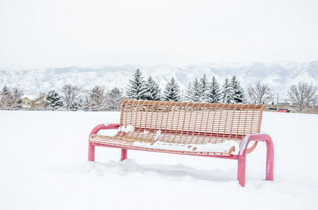 front range: Red park bench and fresh snow with Colorado front range mountains in background on a still February morning