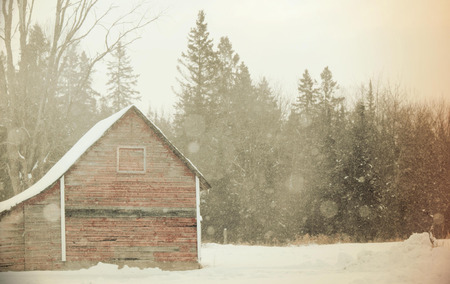 old barn in winter: Red shed