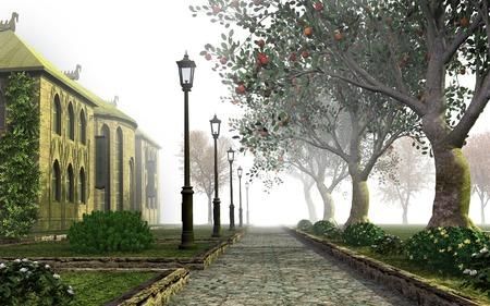 shrub: Misty park alley