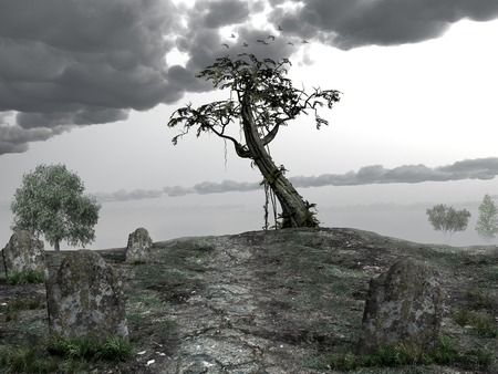 lonely tree: Cemetery hill with a lonely tree