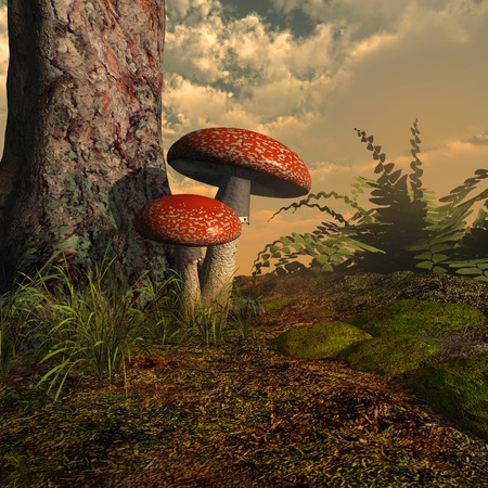moss: Toadstools under the tree